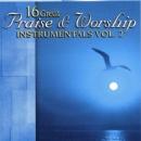 16 Great Praise and Worship Instrumentals, Vol. 2